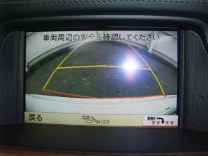 DSCF9130